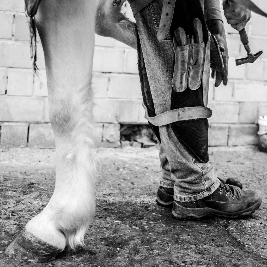 Piede del cavallo e maniscalco