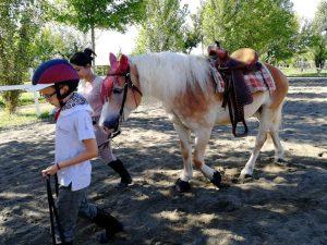 cavallo con sella western